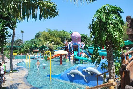 Bali Safari & Marine Park - Bali Destiny Travel