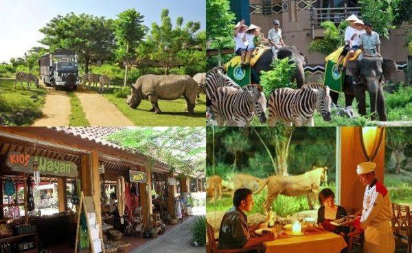 bali safari bali destiny travel