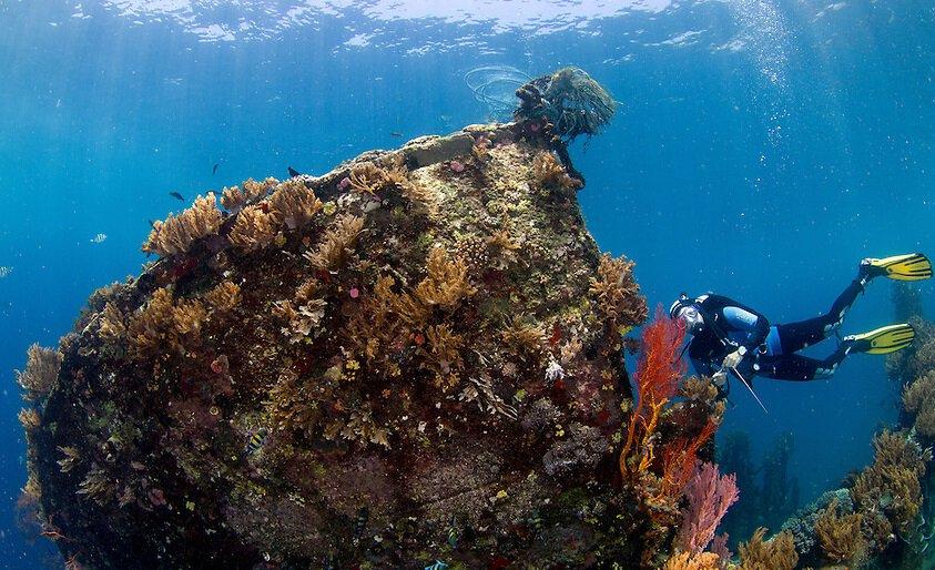 9 Spot Wisata Bawah Laut Di Bali Paling Menakjubkan Bali